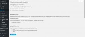 Advanced auatomatic update's