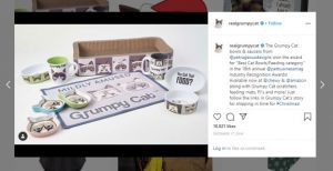make money instagram - can you make money - grumpy cat