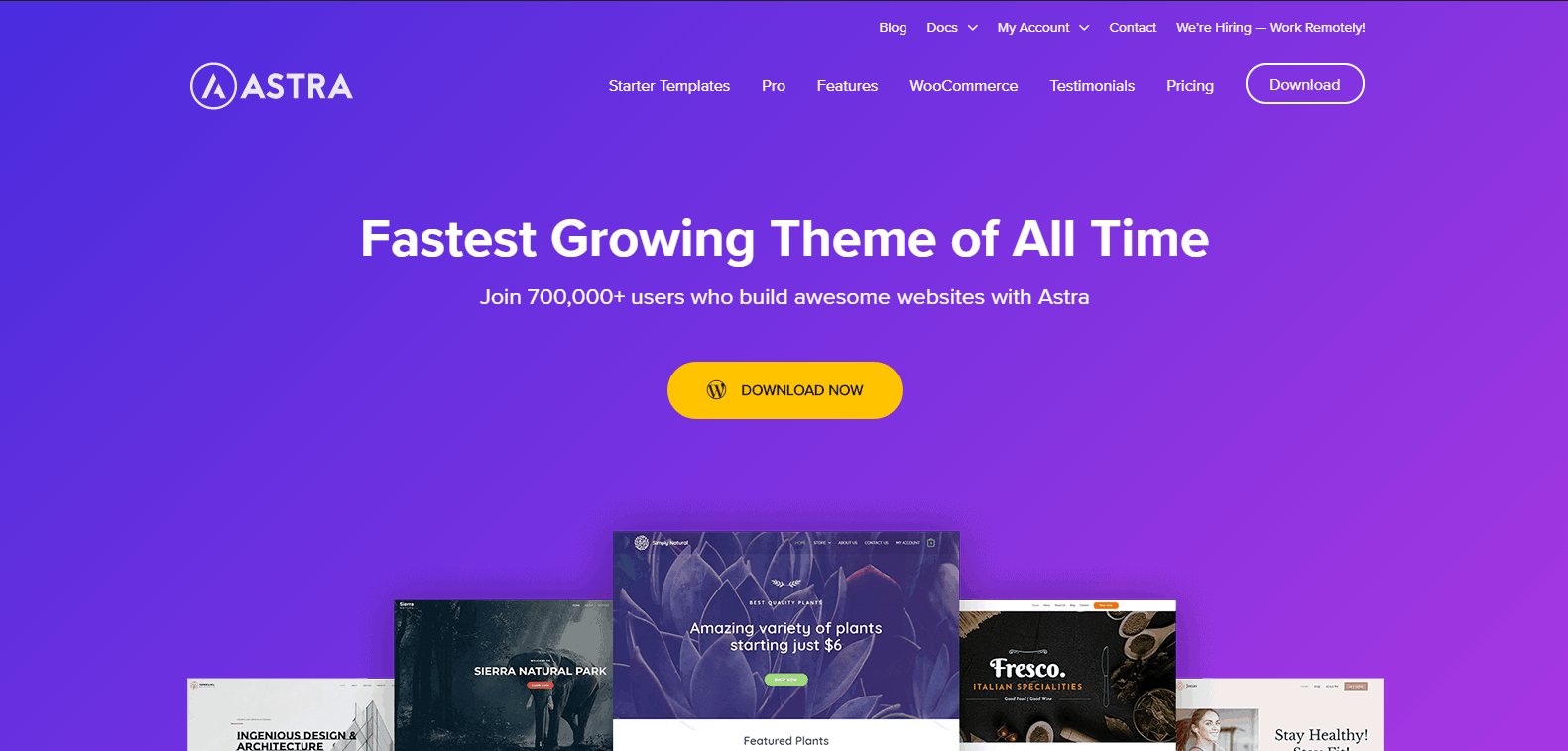 complete guide blog - installing theme - astra